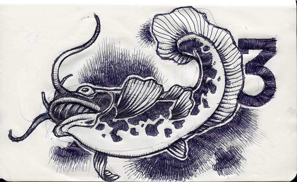 Kiushu Catfish